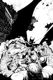 Batman in The Court of Owls: An Adult Coloring Book