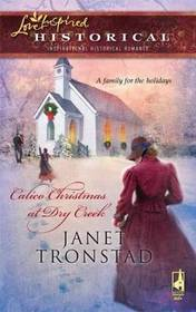 Calico Christmas at Dry Creek (Dry Creek Historical, Bk 1) (Steeple Hill Love Inspired Historical #19)