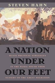A Nation under Our Feet : Black Political Struggles in the Rural South from Slavery to the Great Migration