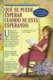 Que Se Puede Esperar Cuando Se Esta Esperando (Spanish)