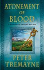 Atonement of Blood A Mystery of Ancient Ireland