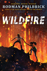 Wildfire A Novel