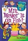 Mrs Meyer is on Fire