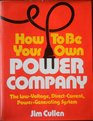 How to be Your Own Power Company Low Voltage Direct Current Power Generating System