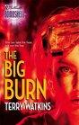 The Big Burn (Silhouette Bombshell, No 76)