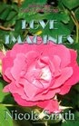 Love Imagines Book Six of the Sully Point Series