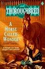 A Horse Called Wonder (Thoroughbred, Bk 1)