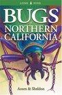 Bugs of Northern California