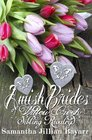 Amish Brides of Willow Creek Sibling Rivalry Book One