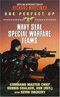 One Perfect Op : Navy SEAL Special Warfare Teams