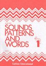 Sounds Patterns and Words Workbook 1