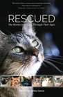 Rescued The Stories of 12 Cats Through Their Eyes