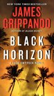 Black Horizon (Jack Swyteck, Bk 11)
