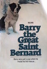 Barry the Great Saint Bernard