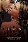 Spirit Bound (Vampire Academy, Bk 5)