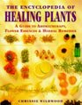 The Encyclopedia of Healing Plants: A Guide to Aromatherapy, Flower Essences and Herbal Remedies