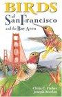 Birds of San Francisco and the Bay Area (City Bird Guides)