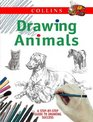 Drawing Animals A Step-By-Step Guide to Drawing Success