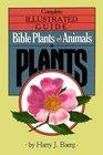 Bible Plants