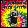 The Wisdom of Jerry Garcia As Collected from Interviews