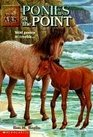 Ponies at the Point (Animal Ark (Library))