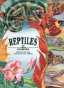 Reptiles: At Your Fingertips (At Your Fingertips Series)