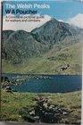 The Welsh Peaks