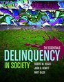 Delinquency in Society The Essentials