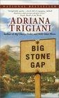 Big Stone Gap (Big Stone Gap, Bk 1)