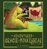 The Adventures of Gracie & MonkeyBear, Book 1: Summer