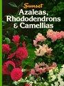 Azaleas  Rhododendrons  Camellias