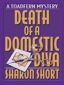 Death of a Domestic Diva (Stain Busting, Bk 1)(Large Print )
