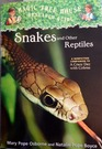 Snakes and Other Reptiles A Nonfiction Companion to 'A Crazy Day with Cobras'