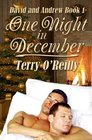 David and Andrew Book 1 One Night in December