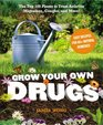 Grow Your Own Drugs The Top 100 Plants to Grow or Get to Treat ArthritisMigraines Coughs and more