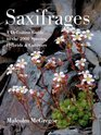 Saxifrages The Definitive Guide to 2000 Species Hybrids  Cultivars