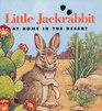 Little Jackrabbit at Home in the Desert