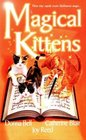 Magical Kittens The Reluctant Warlock / The Black Kitten / A Cat By Any Other Name