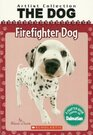 Firefighter Dog A Chapter Book Starring The Dalmatian