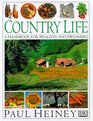 Country Life A Handbook for Realists and Dreamers