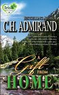 A Gift From Home (Irish Western, Bk 4)