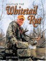 Hunting The Whitetail Rut