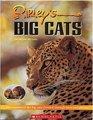 Ripley's Big Cats