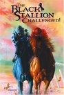 The Black Stallion Challenged (Black Stallion, Bk 16)