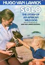 Solo the story of an African wild dog