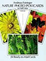 Nature Photo Postcards in Full Color 24 Ready-to-Mail Cards