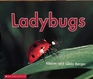 Ladybugs (Time-to-Discover)