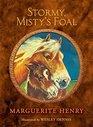 Stormy Misty's Foal