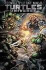 Teenage Mutant Ninja Turtles Universe Vol 4 Home