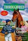Wonder's Champion
